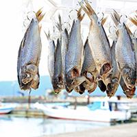 滋賀県が誇る発酵食品・鮒寿司は、家庭や店ごとに守ってきた味がある