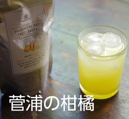 菅浦の柑橘
