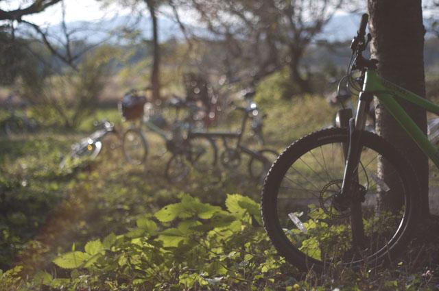 自転車で巡る、湖北の大自然と観音様!【湖北サイクル -観音編-】