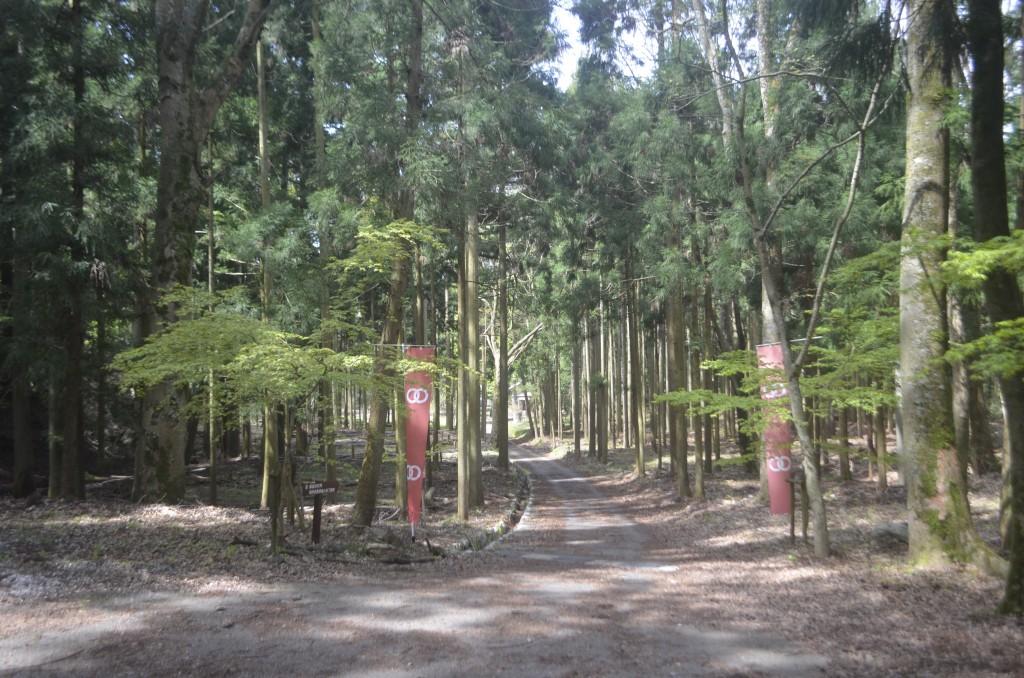 doppo-sansai (1)