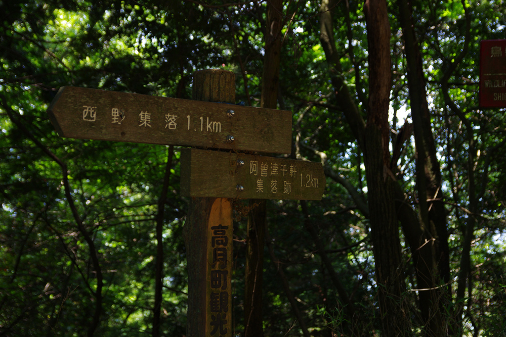 阿曽津千軒集落跡への道