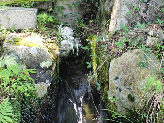 古橋をめぐる水路