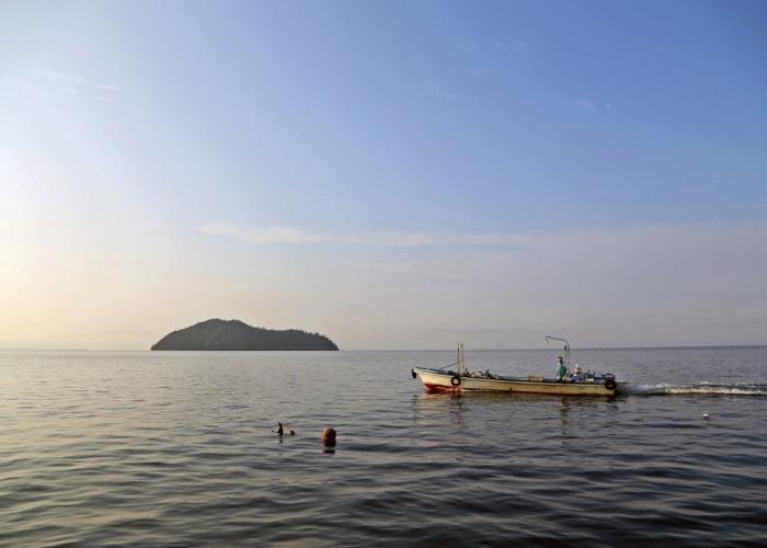 淡海の至極の宝石「ビワマス」
