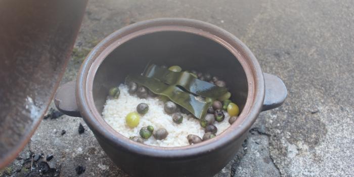 むかごと銀杏の炊き込み御飯