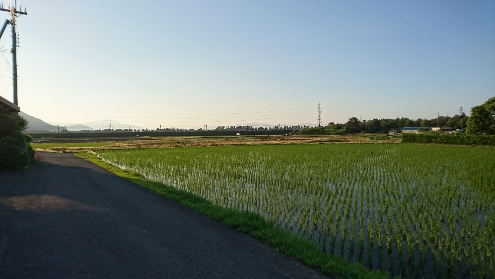 マキノ新保地区から撮った写真