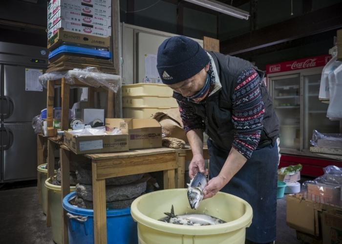 湖北の発酵文化が伝える鯖のなれずし